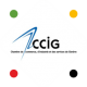 logo ccig